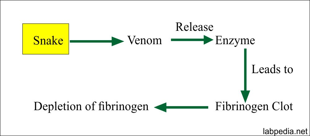 Acute Phase Protein – Part 5 – Fibrinogen (Factor 1)