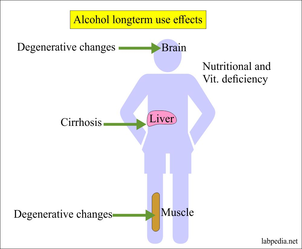 Alcohol long term use effect