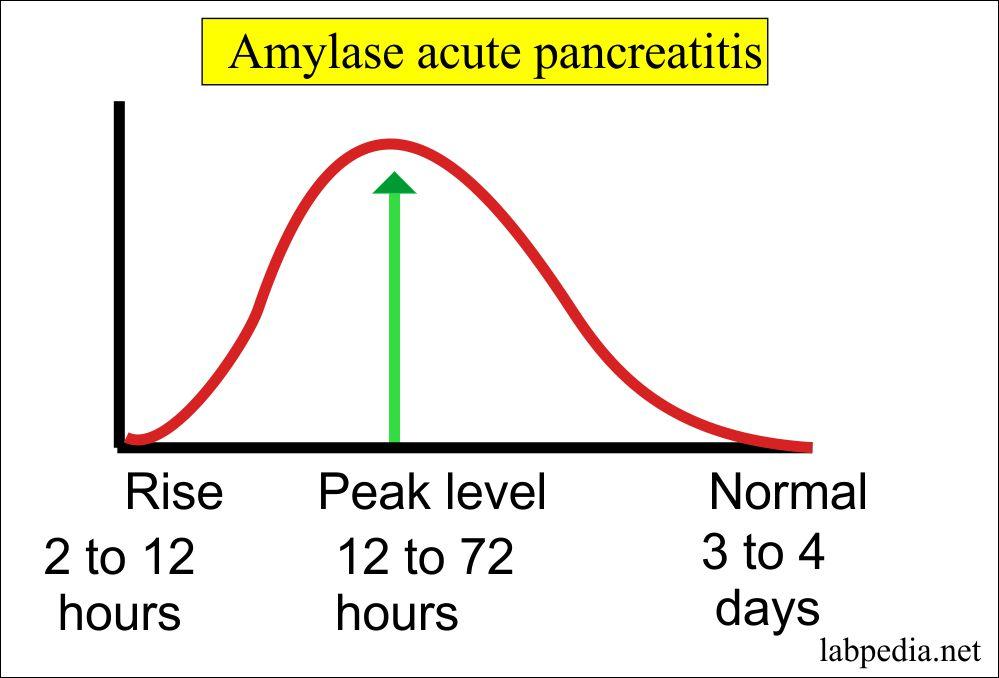 Amylase level (Serum)