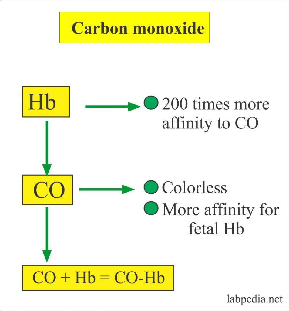 Carbon monoxide and hemoglobin