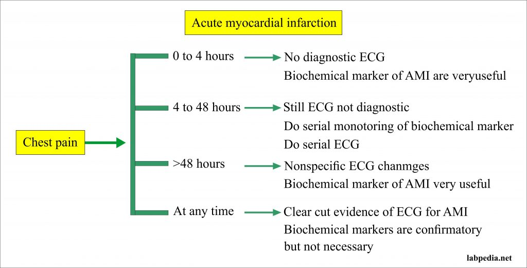 Acute myocardial infarction and stages