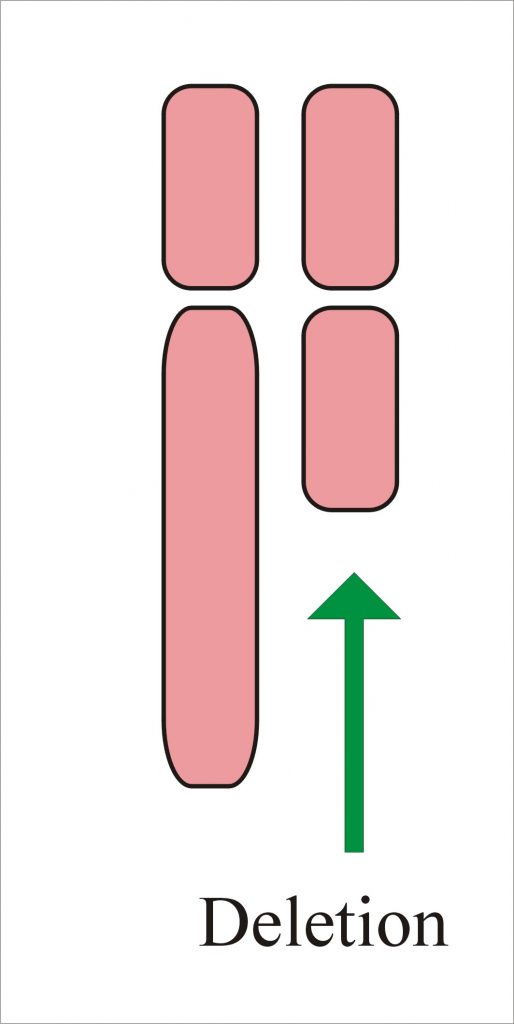 Chromosome with deletion