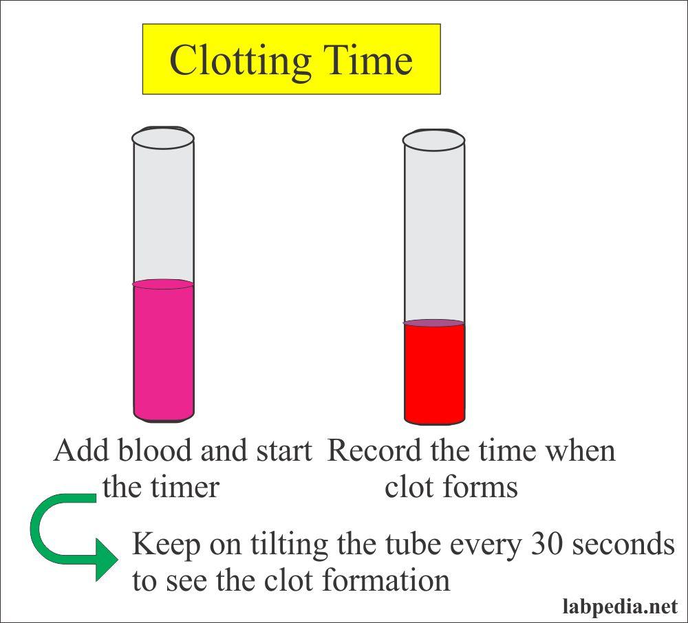 Clotting Time (C T)