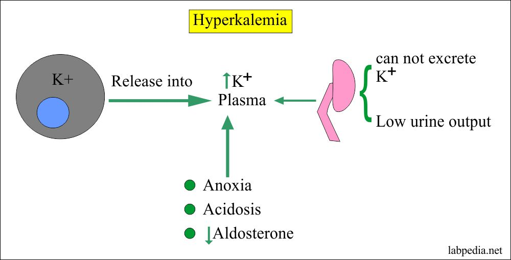 Hyperkalemia and its complications