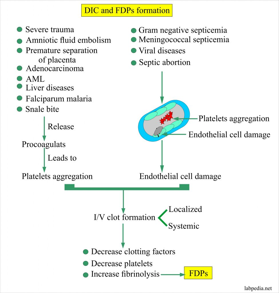 DIC and FDPs and mechanism of action
