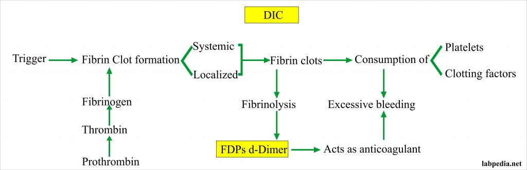 DIC and FDP and d-Dimer