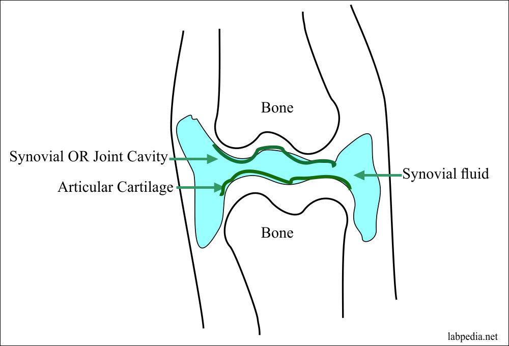 Aspiration of the knee joint fluid