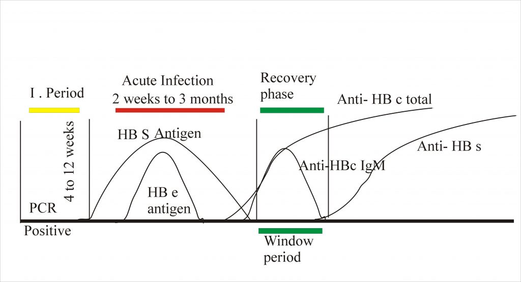 Hepatitis B Virus – Part 2 –  Surface Antigen (HbS) by ELISA, Australia antigen,  HBV