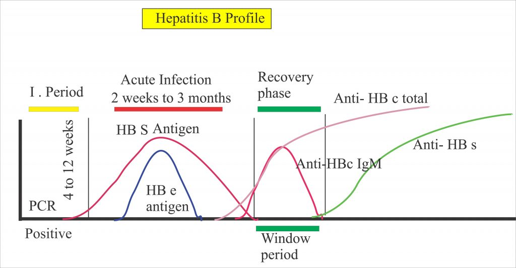 Hepatitis B Virus – Part 3 –  Anti-HBS Screening (for blood donor and Population), HBV