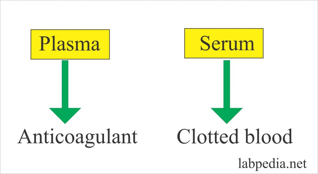Laboratory:- Part 4 –  Serum, Plasma Preparation, Specimen Storage Precautions