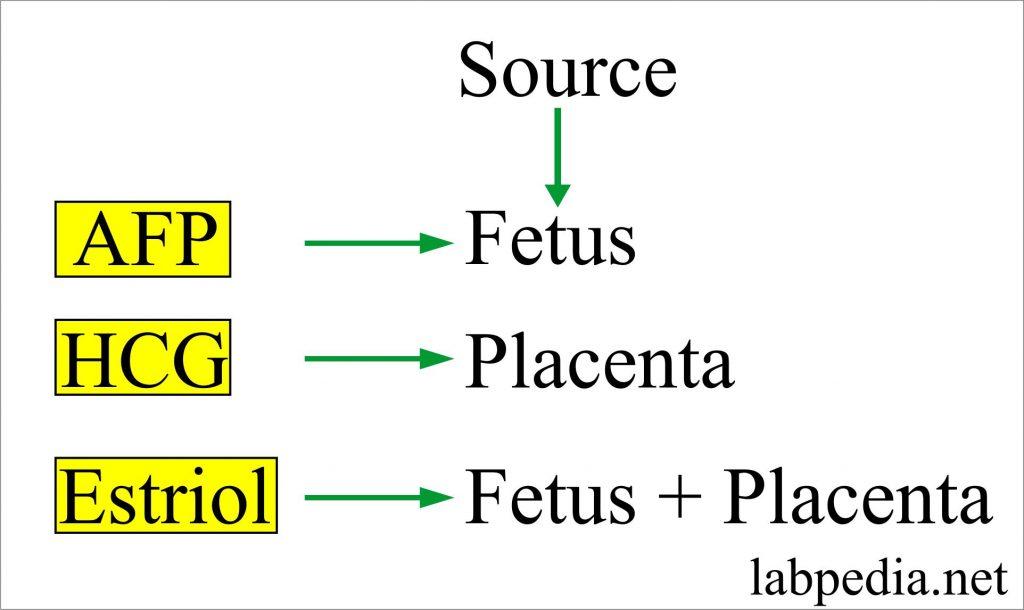 Source of Hormones