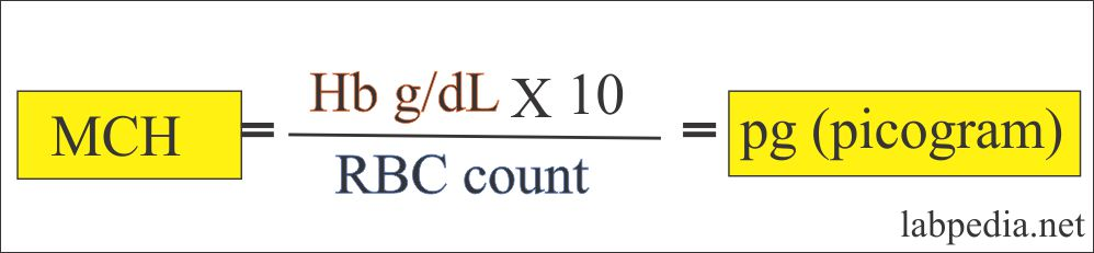 Calculation formula for MCH