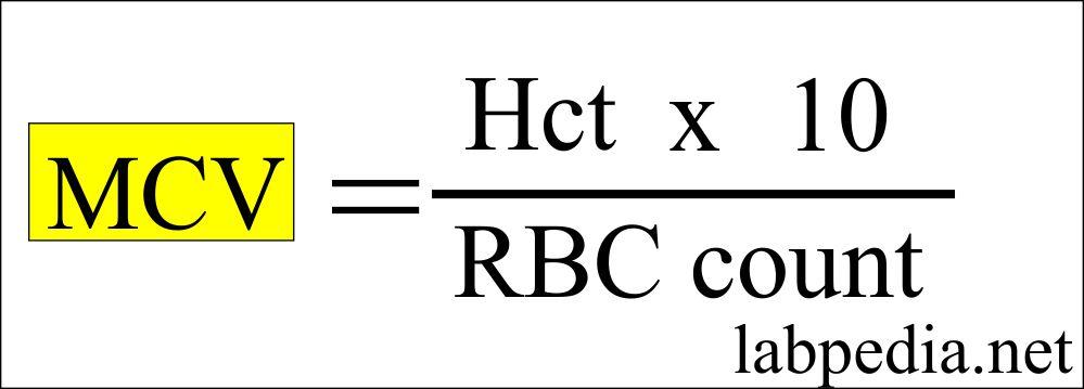 MCV calculation formula