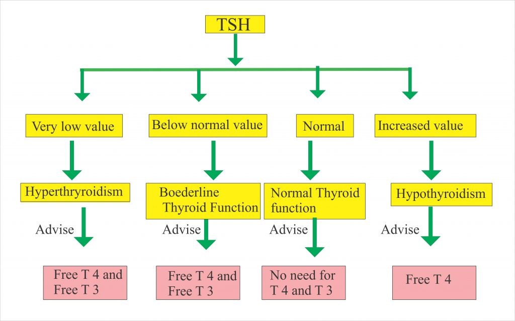 Thyroid Part 1 Thyroid Function Test Thyroid Hormones T4 T3