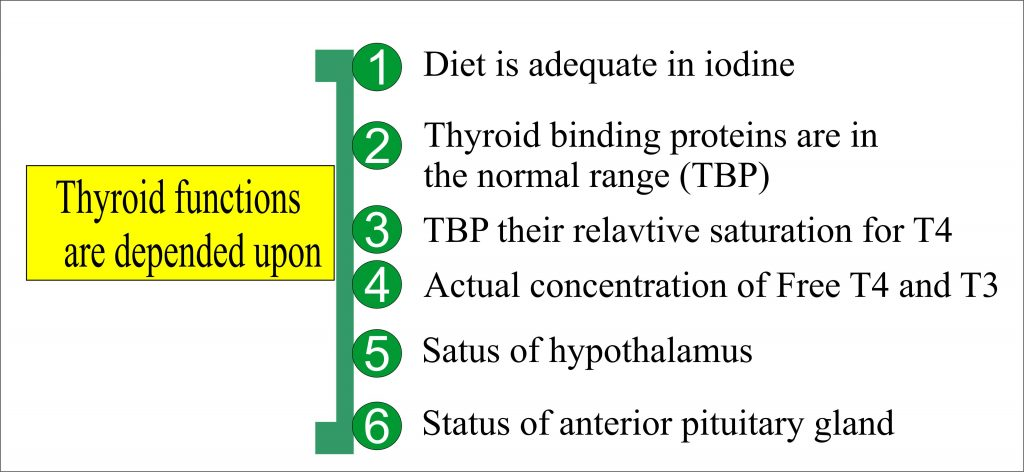 Thyroid functions and its dependency