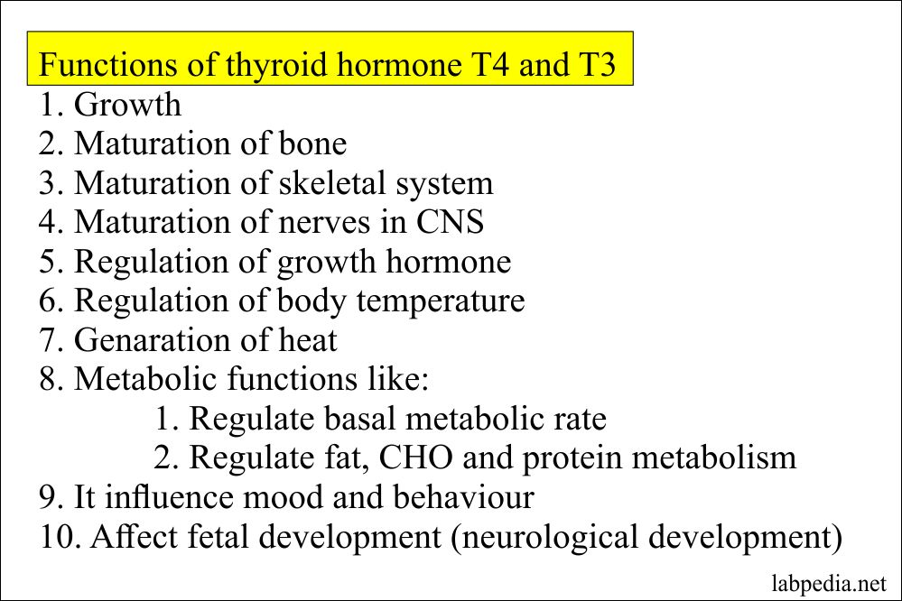 Thyroid Part 5 Thyroxine Total T4 Total Labpedia Net