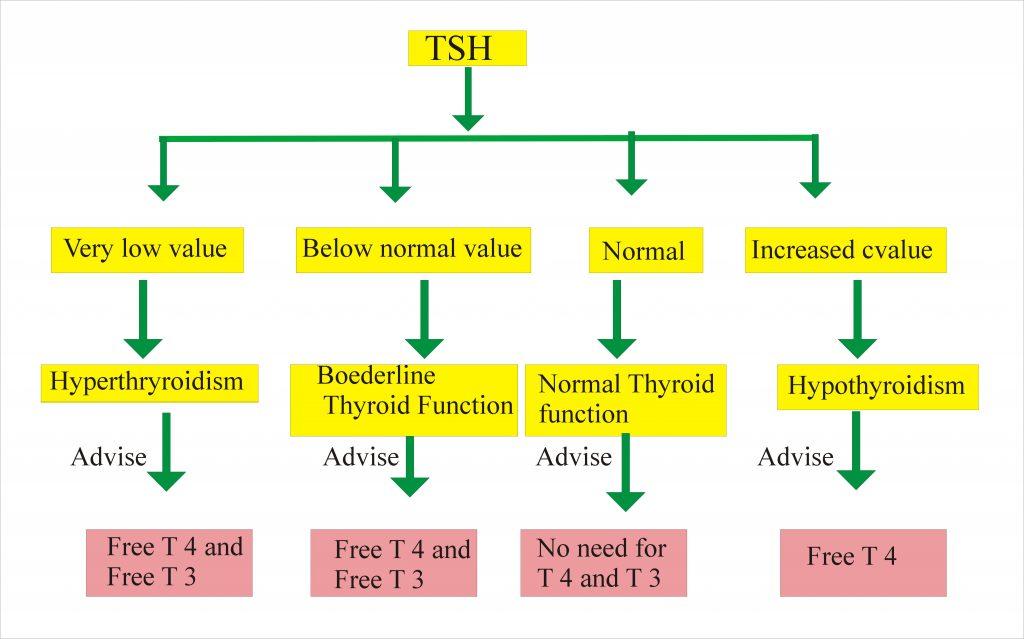 Thyroid – Part 8 – T3 Free , Free Triodothyronine