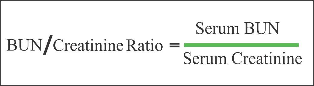 BUN / Creatinine ratio