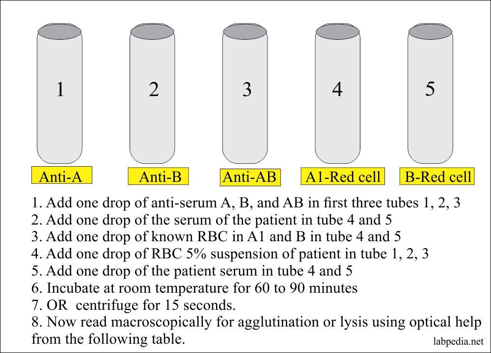 Blood grouping tube method