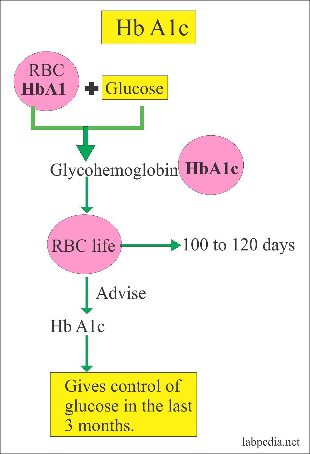 HbA1c relationship to glucose level