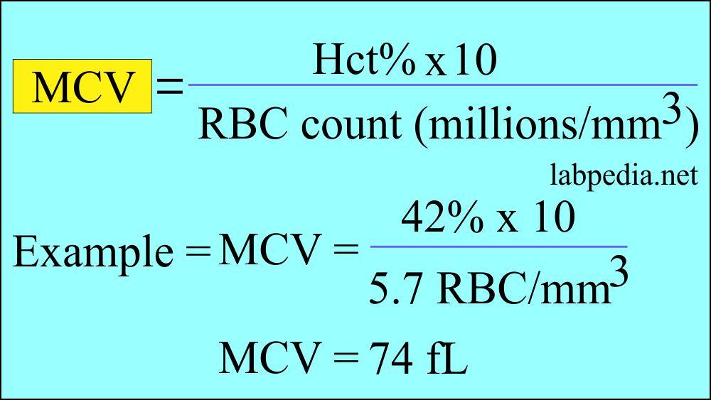 MCV formula and calculation