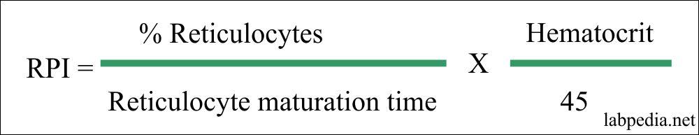 Reticulocyte production index