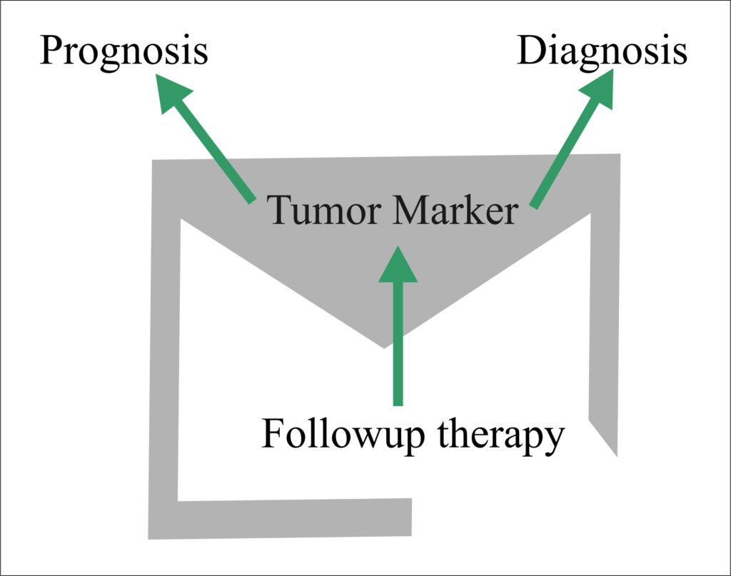 Tumor Marker – Part 6 – BRCA1, BRCA2,   Significance in Breast Cancer