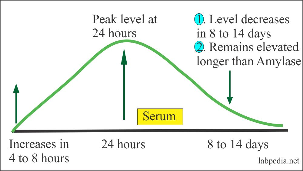 Lipase level in the Acute Pancreatitis
