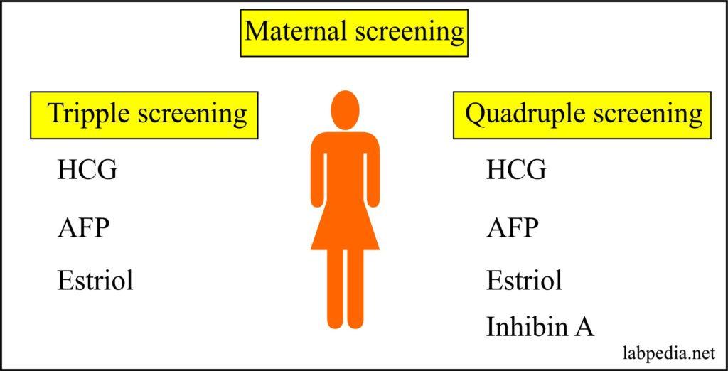 Maternal Screening – Part 1 – Maternal Triple or Quadruple screening for Genetic abnormality