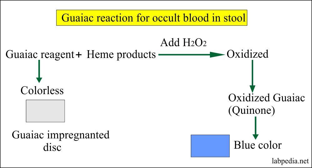 Occult guaiac reagent principle