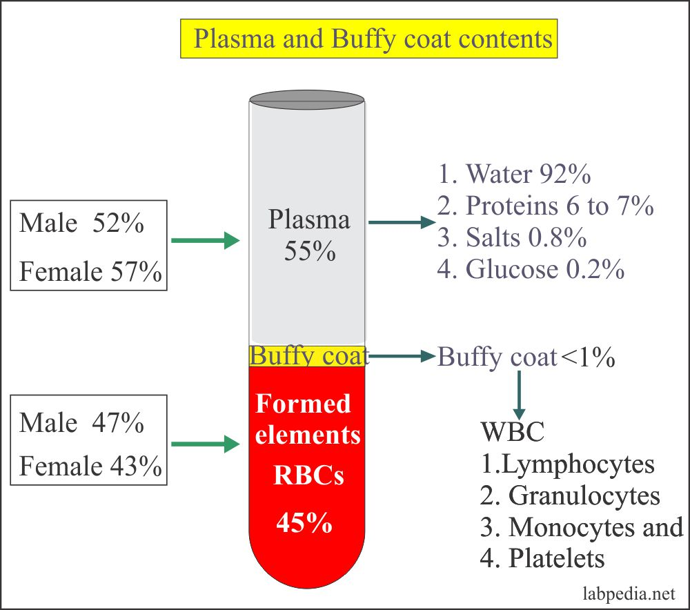 Plasma and Buffy coat contents