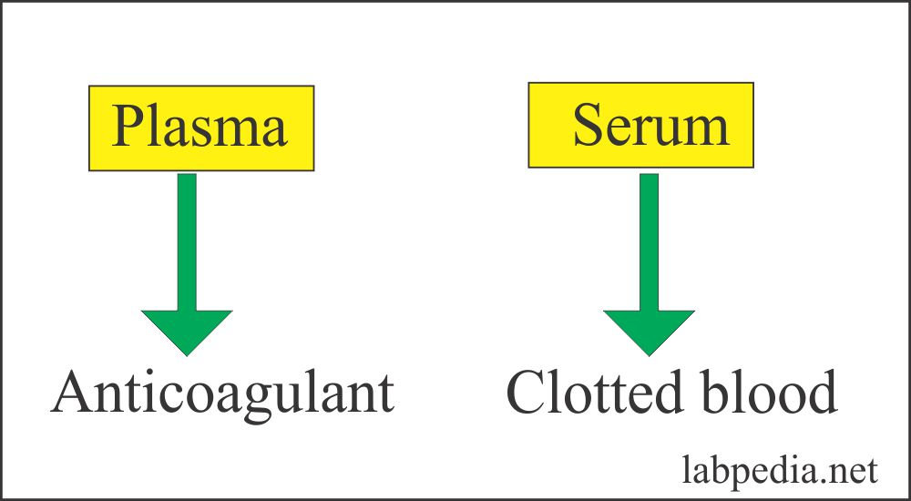 Serum and plasma difference