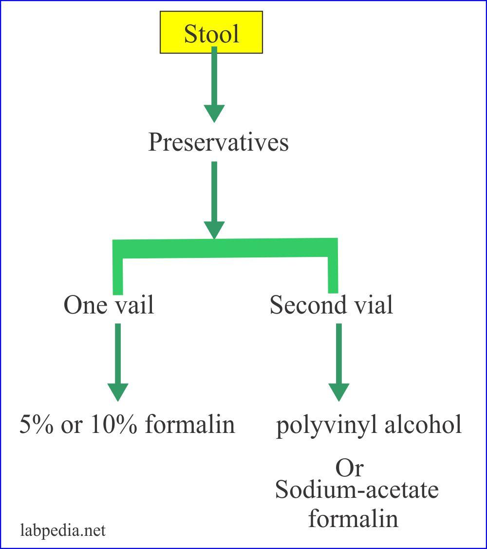 Stool preservatives