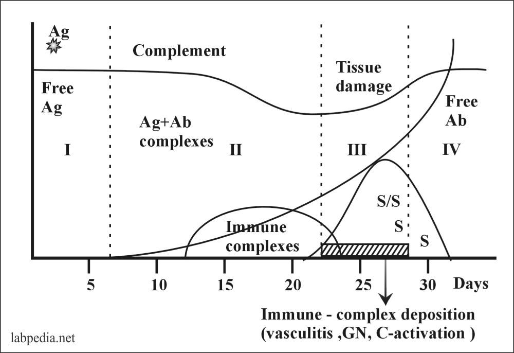 Fig 107: Course of the Serum Sickness
