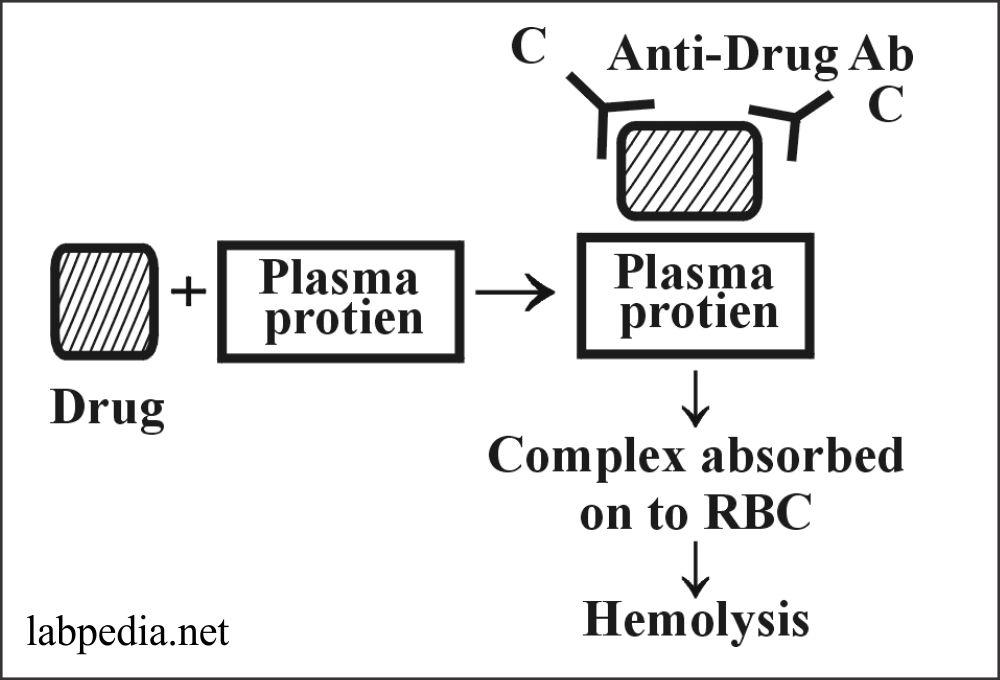Fig 152: Drugs leading to hemolysis