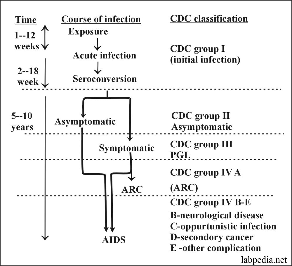 Fig 154: CDC Classification of AIDS