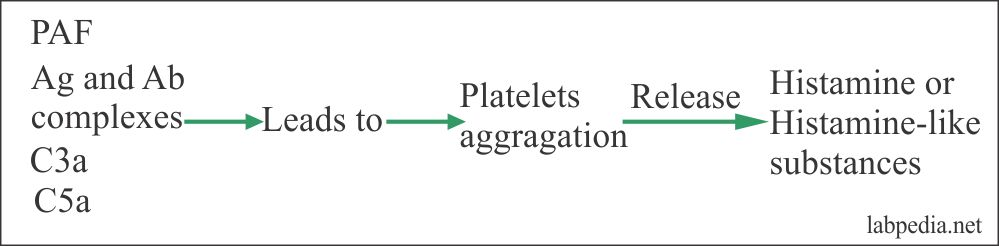 Fig 43: Platelets Functions