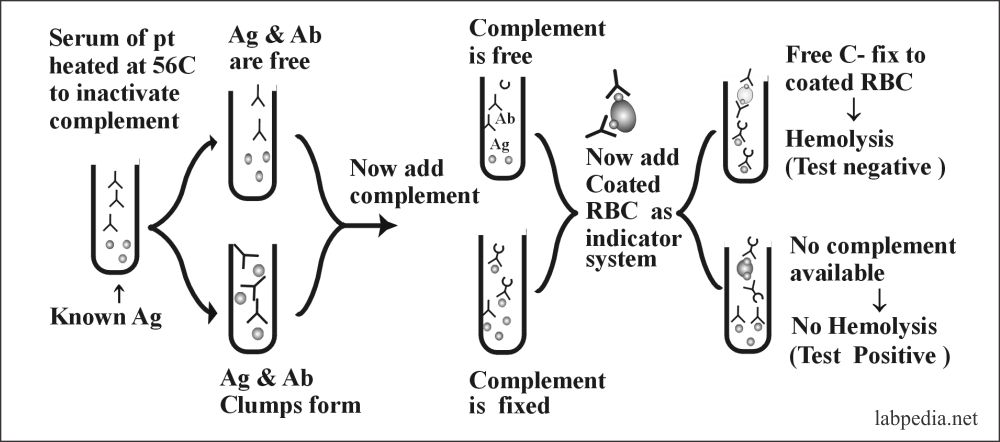 Fig 76: complement based test