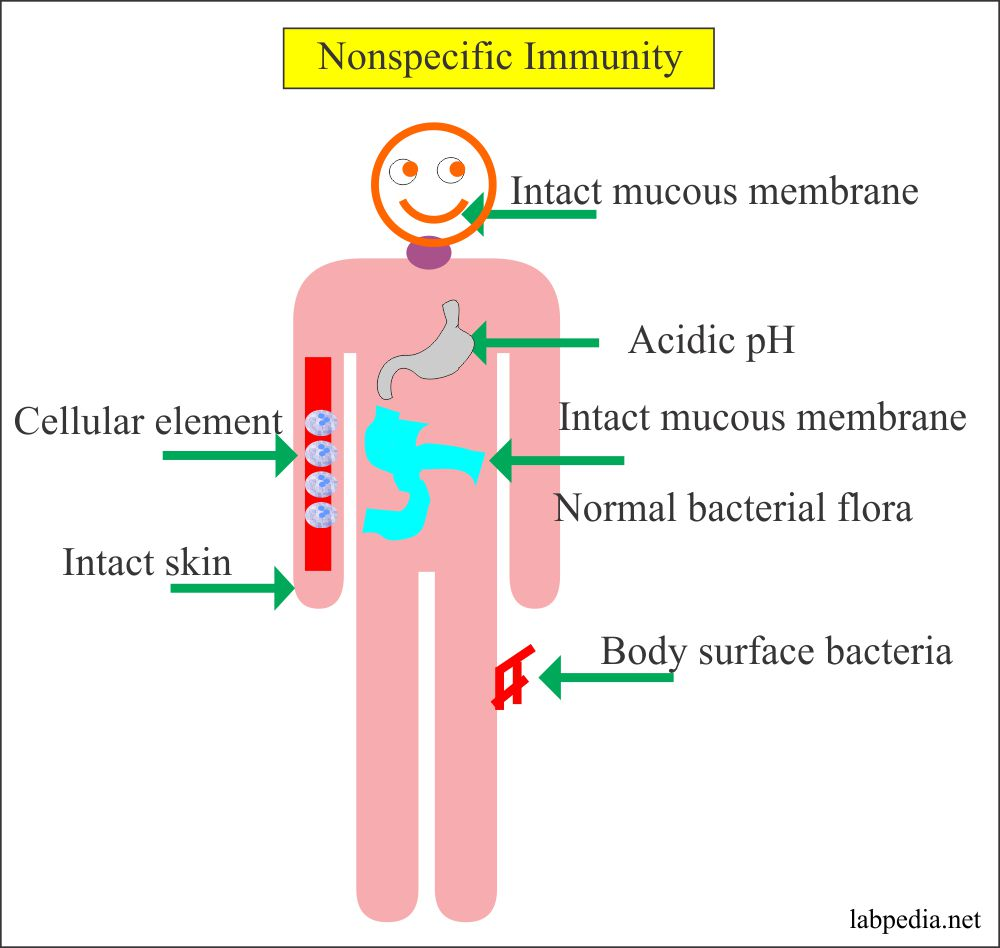Nonspecific immunity and possible ways
