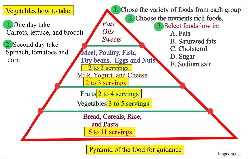 How Much you should Eat Fats, Carbohydrtaes, and Protein each Day