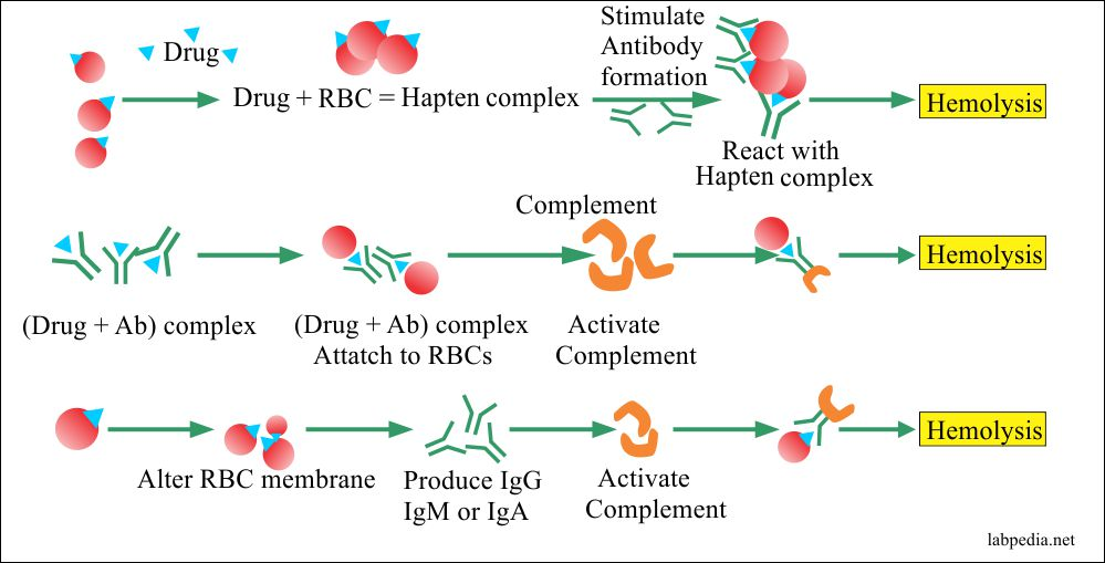Autoimmune hemolytic anemia and the role of drugs