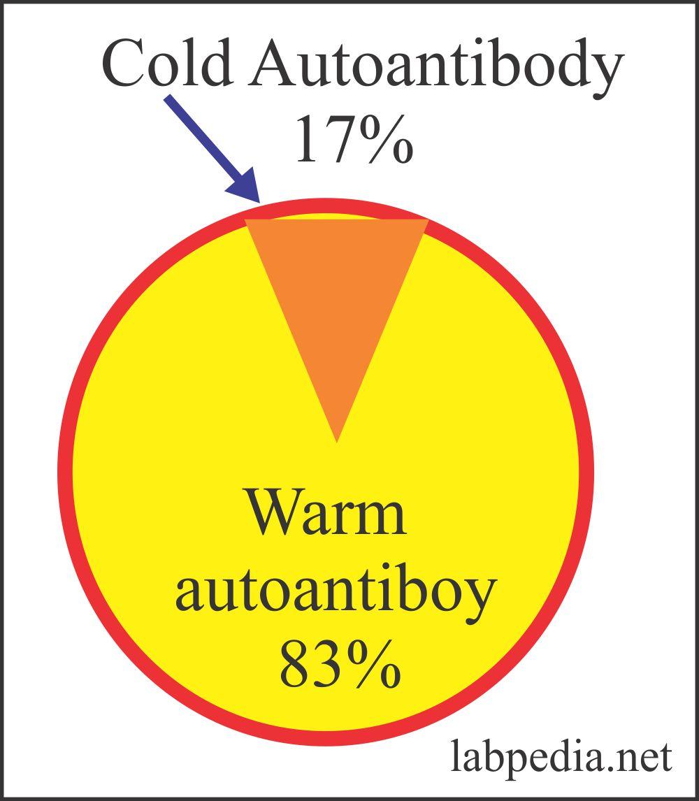 Fig 148: Autoimmune Hemolytic Anemias
